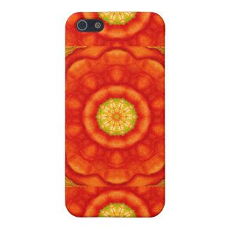 Meditation inspired design iPhone 5/5S case