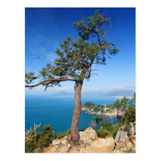 Mediterranean landscape - Sestri Levante Postcard