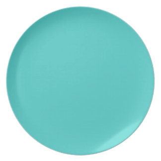 Medium Turquoise-Colored Plate