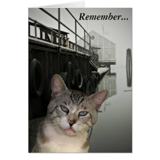 Meece The Cat Encouragement Greeting Card