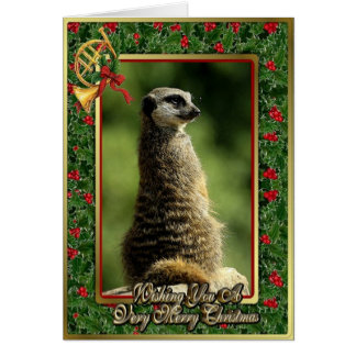 Meercat African Animal Blank Christmas Card