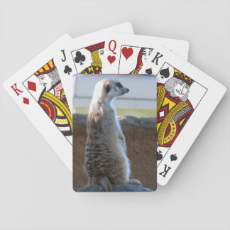 Meercat Playing Cards