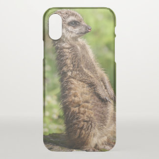 Meerkat_20171001_by_JAMFoto iPhone X Case
