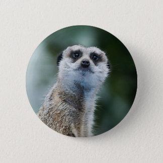 Meerkat 6 Cm Round Badge