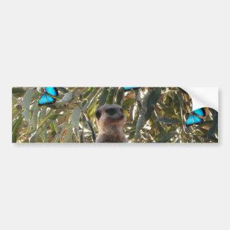 Meerkat,_And_Butterflies,_ Bumper Sticker