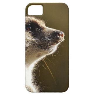 Meerkat Animal Nature Zoo Tiergarten Small Fur Case For The iPhone 5