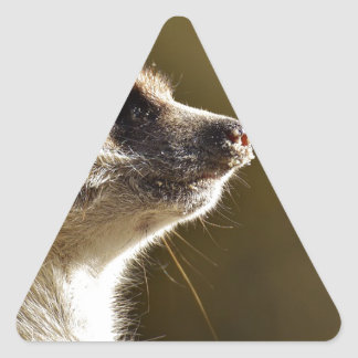 Meerkat Animal Nature Zoo Tiergarten Small Fur Triangle Sticker