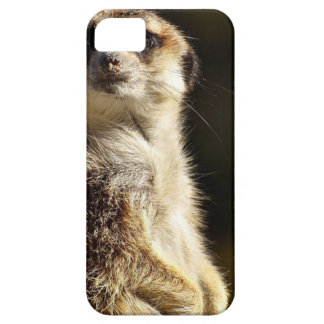 Meerkat Barely There iPhone 5 Case