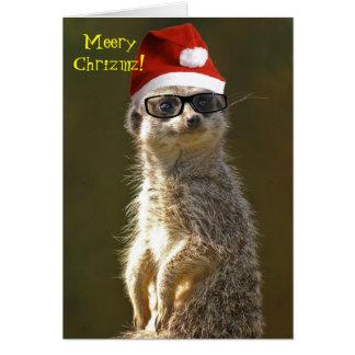Meerkat Christmas Card