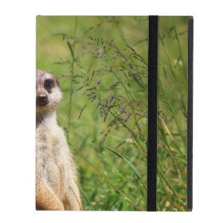 Meerkat Cover For iPad
