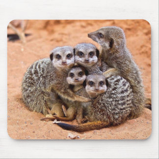 Meerkat family mouse pad