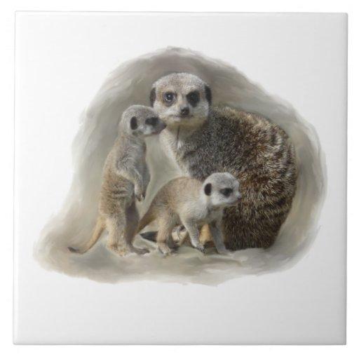 meerkat family tiles