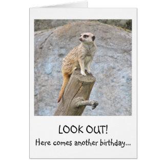 Meerkat Funny Birthday Card