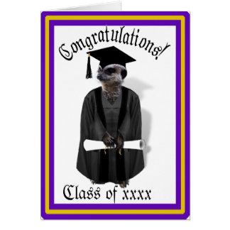 Meerkat Graduate W/Grey Gown & Black Sash Card