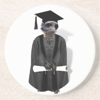 Meerkat Graduate W/Grey Gown & Black Sash Coaster