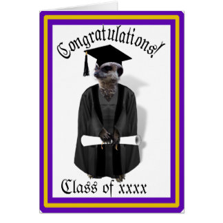 Meerkat Graduate W/Grey Gown & Black Sash Greeting Card