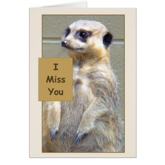 Meerkat I Miss You Greeting Card