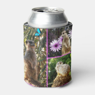 Meerkat In A Photo Collage, Can Cooler