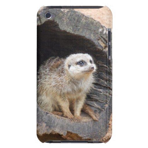 Meerkat iPod Touch Case