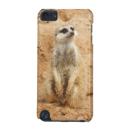 Meerkat iTouch Case iPod Touch 5G Case