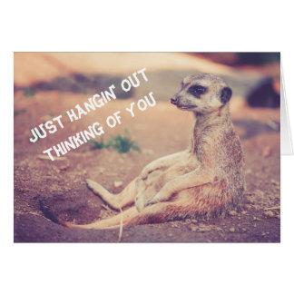 Meerkat Missing You Greeting Card