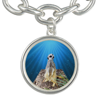 Meerkat On A Blue Starry Background,