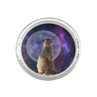 Meerkat On Blue Moonlight Night Watch,