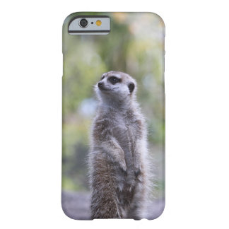 Meerkat On Watch Barely There Phone Case