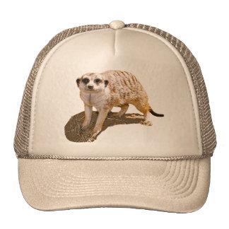 Meerkat Picture Trucker Hat