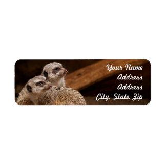 Meerkat Return Address Sticker Return Address Label