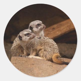 Meerkat Round Sticker