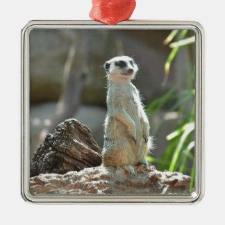 Meerkat Silver-Colored Square Decoration