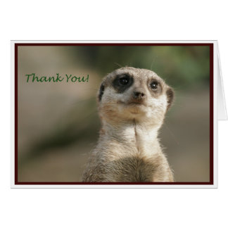 Meerkat Thank You Notecard