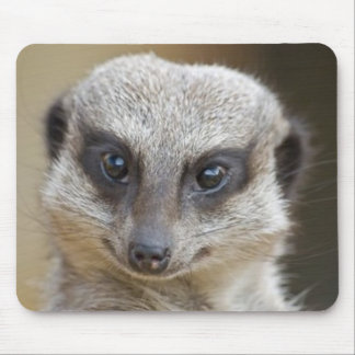 Meerkat Up Close Mouse Pad