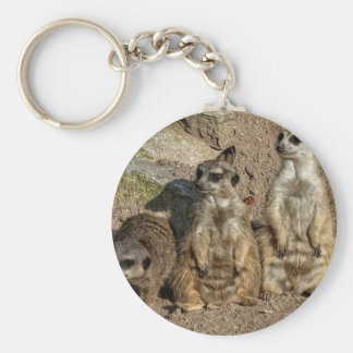 Meerkats Key Ring