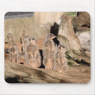 Meerkats Mouse Mats