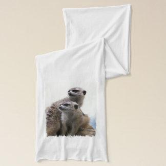 Meerkats Scarf