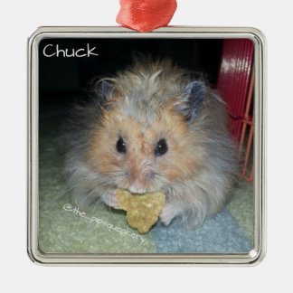 Meet Chuck Silver-Colored Square Decoration