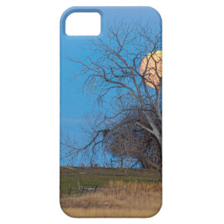 Mega Beaver Moon Case For The iPhone 5