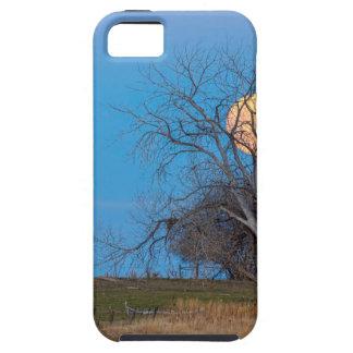 Mega Beaver Moon iPhone 5 Covers