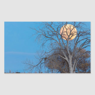 Mega Beaver Moon Rectangular Sticker