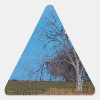Mega Beaver Moon Triangle Sticker