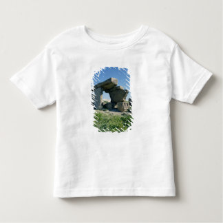 Megalith, prehistoric toddler T-Shirt