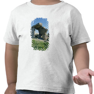 Megalith, prehistoric shirts