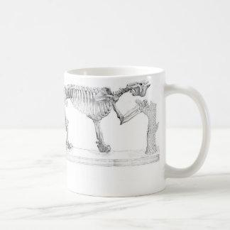 Megatherium Prehistoric Animal Skeleton Basic White Mug