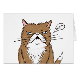 Meh Funny Grumpy Cat Drawing Card