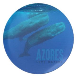 "Melamine Plate Azores ""love nature """