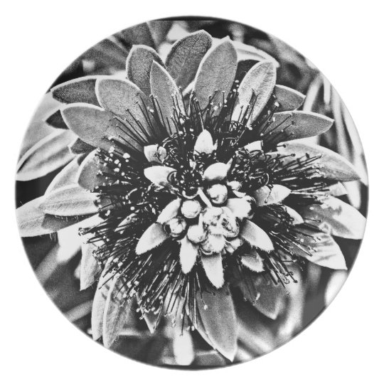 "Melamine Plate ""White Cactus Flower in B&W"""