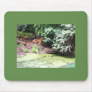 Melbourne Zoo Tiger Mousepads
