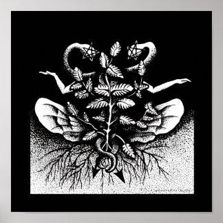 Melissa officinalis (Lemon Balm) - On Black Poster